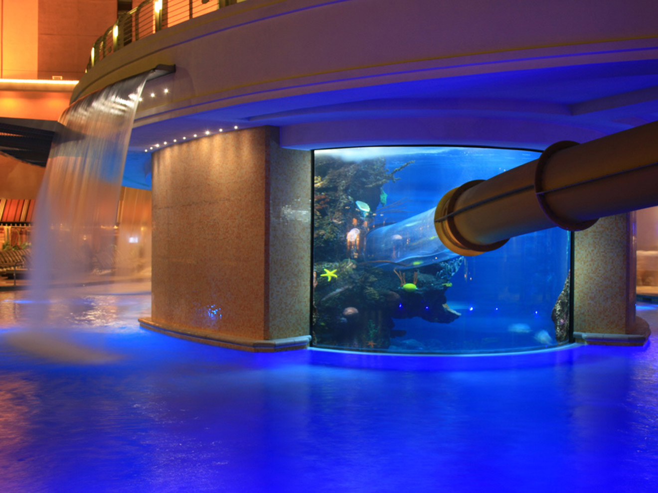 The Tank Swimming Pool At Golden Nugget